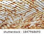 Dried Fish On Net Under Sunlight