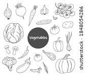 set of vegetable doodles on a... | Shutterstock .eps vector #1848054286