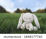 Cute Easter Bunny Toy Sitting...