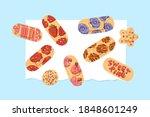 plasters depicting sweet donuts ... | Shutterstock .eps vector #1848601249