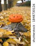 Halloween Pumpkin Head In...