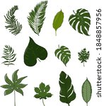 collection of tropical green... | Shutterstock .eps vector #1848857956