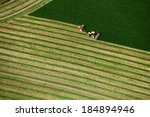 An Aerial View Of Hay Being...