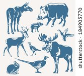 Vector Wild Animals And Birds...