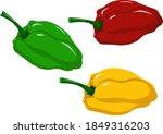 sweet pepper for salad   green  ...   Shutterstock .eps vector #1849316203