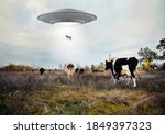 Landscape with cows and ufo....