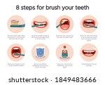 dental hygiene infographic....   Shutterstock .eps vector #1849483666