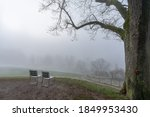 Foggy morning in Bern with a view of the meadow and silhouettes of trees