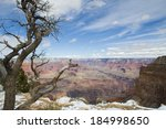 Grand Canyon With Isolated Tre...