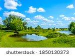 Summer Green Rural Pond In...