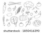 cute doodle vegetable cartoon...   Shutterstock .eps vector #1850416390