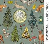 forest adventure magic seamless ... | Shutterstock .eps vector #1850437000