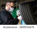 Professional Car Mechanic...