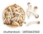 Brown Beech Mushrooms Or...