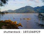 Wonderful Landscape With...