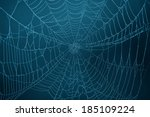 Spider Web In The Darkness