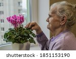 An Elderly Woman Cares For A...