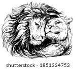 Leos. A Lion Embraces A Lioness....