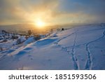 January Landscape In The...