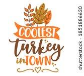 Coolest Turkey In Town   ...