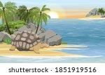 Aldabra Giant Tortoise On The...