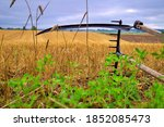 Rustic Scythe And Rake In A...