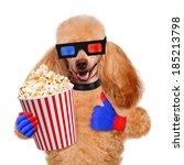dog watching a movie | Shutterstock . vector #185213798