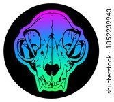 Animal Skull On Colorful...