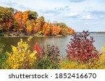 Colorful Autumn Foliage...