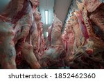 Cattles Cut And Hanged On Hook...