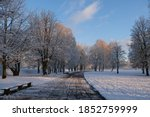 Scenery Of A Park On A Bright...