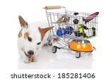 Stock photo jack russell terrier with shopping basket 185281406