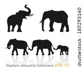 Set Of Silhouette Elephants In...