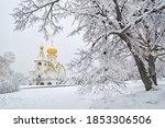 Winter Wonderland In The City....