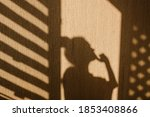 Silhouette Of Young Woman...