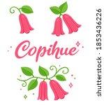copihue  chilean bellflower ... | Shutterstock .eps vector #1853436226