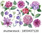 Beautiful Flowers  Dahlias ...