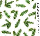 top view flat lay green fir... | Shutterstock . vector #1853885029