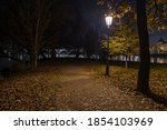 Light From Street Lights In The ...