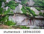 big stones   rock detal with...   Shutterstock . vector #1854610330