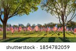 Field Of American Flags...