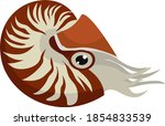red nautilus  illustration ... | Shutterstock .eps vector #1854833539