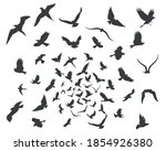 set of silhouettes of birds in... | Shutterstock .eps vector #1854926380