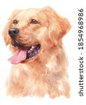 Water Colour Painting Of Golden ...