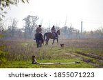 Horse With Rider Walking In The ...