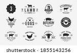 farm animals logo set. lamb ... | Shutterstock .eps vector #1855143256