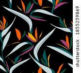 tropical bird of paradise...   Shutterstock .eps vector #1855259869
