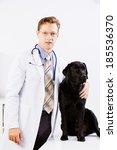 labrador lying on table checked ... | Shutterstock . vector #185536370
