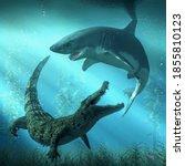 A Shark And A Crocodile Circle...