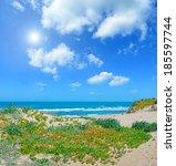 green shore under a bright sun...   Shutterstock . vector #185597744